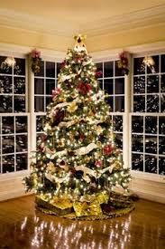 tree trees tree and
