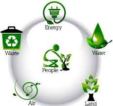 green plans green plans zijiapin