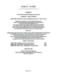 classic resume template sles here are classic resume template sales associate resume sles
