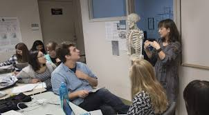 Anatomy And Physiology Class A Shift To Active Learning Art Sci Magazine