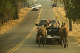 Fire Evacuations Stevens County by Atlas Fire Rages In Sonoma County U2013 Golden Gate Xpress