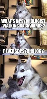 Psychology Meme - bad pun dog meme imgflip