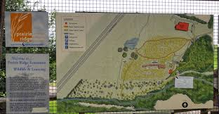 raleigh greenway map grasslands raleigh nature