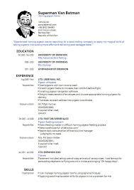 curriculum vitae for job application pdf sle of cv and resume pdf fungram co
