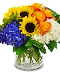 houston flower delivery get well happy day houston flowers co houston tx florist