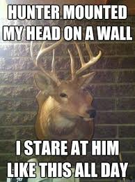 37 best funny deer hunting meme images on pinterest deer hunting