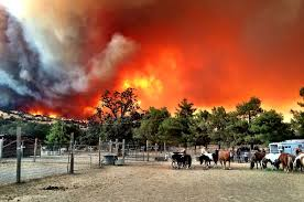 Wildfire Near Reno by Lake Berryessa Fire Up To 6 700 Acres U2014 U0027there Was This Big