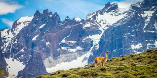 mountains images The 20 best mountains in the world for your world travel bucket list jpg