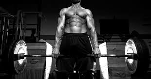 How Much Does A Bench Bar Weigh Standard Weight Lifting Bar Vs Olympic Bar
