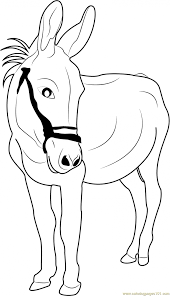 donkey coloring page from shrek pages printable animal kong