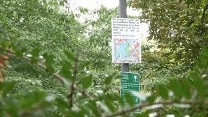 Wetter In Bad Kreuznach Vorfälle In Bad Kreuznacher Parks Beschäftigen Innenausschuss 17