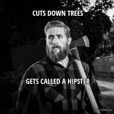 Lumberjack Meme - poor lumberjack meme picture webfail fail pictures and fail videos
