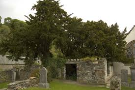 trees linked to graveyards