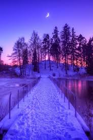 425 best all things purple images on pinterest all things purple
