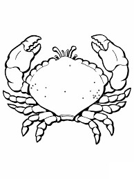 free printable crab coloring pages moana bday pinterest free
