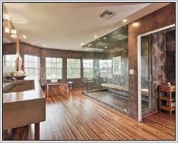 Hardwood Floor Steamer Hardwood Floor Steam Cleaner Home Design Ideas