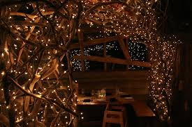 christmas tree house a magical christmas meal picture of the treehouse restaurant at