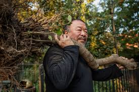ai weiwei melds art and activism in shows about displacement the