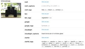 comparing the top five computer vision apis u2013 gaurav oberoi