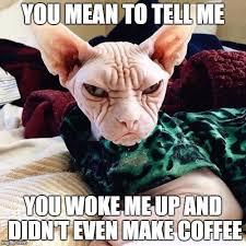 Grumpy Face Meme - no coffee imgflip