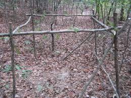 Deer Ground Blind Plans Building A Natural Ground Blind 7 Steps