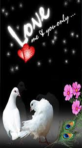 love themes for nokia 5233 download cute love 360 x 640 wallpapers 2967005 cute love walls