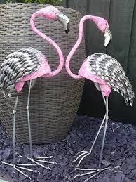 31 best pink flamingo images on pink flamingos garden