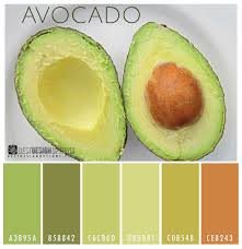 Color Design Palette Avocado Color Palette Green Avocado The Green Buttery Flesh Of A