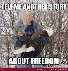 Funny Eagles Meme - eagle memes best collection of funny eagle pictures