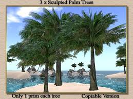 second marketplace stock clearance sale 3 x palm trees copy