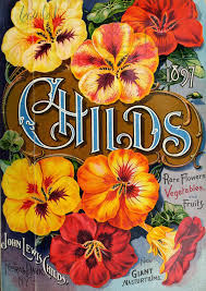 childs seed company 1896 john lewis childs floral park ny