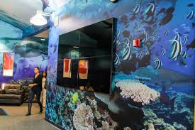 wall floor graphics wall wraps and graphics can be installed on multiple types of surfaces including smooth painted wall surfaces or installed directly on pvc or foam core