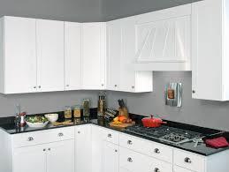 Jacksonville Kitchen Cabinets Kitchen Furniture Wolf Kitchen Cabinets Reviews York Pawolf