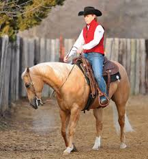 Keep Your Horse On The Rail Horse U0026rider Western Training How