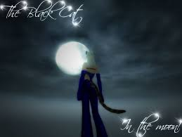 pw the black cat in the moon by fox on deviantart