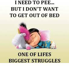 Get Out Of Bed Meme 25 Best Memes About I Dont Want To Get Out Of Bed I Dont