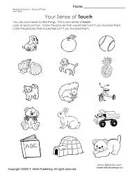 33 best five sences images on pinterest five senses kindergarten