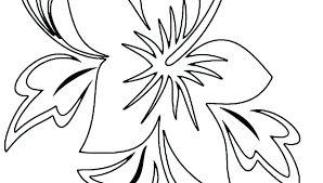 coloring pictures of hibiscus flowers hibiscus coloring page clip art of coloring page hibiscus flower