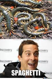 Meme Bear Grylls - bear grylls overview of food by kakar0t meme center