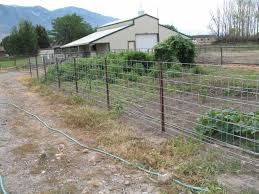 hog wire fence panels hog wirewood wire fence this is