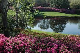 Botanic Garden Mansion 13 Amazing Botanical Gardens In The South