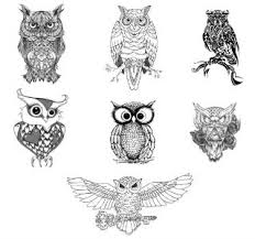 Owl Tattoos - owl tattoos tattoos library