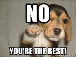No You Are Meme - no you re the best dog pointing meme generator
