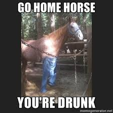 Meme Drunk - horse go home you are drunk know your meme