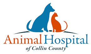 animal hospital of collin county veterinarian in allen tx usa
