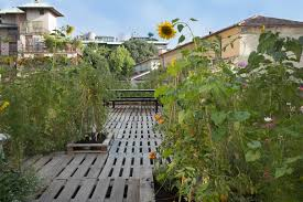 piuarch studio has converted its rooftop into a permanent