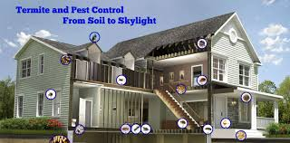 pest control termites thrasher termite u0026 pest control