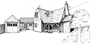 pen and ink artwork by sue pownall realistic ink drawings from