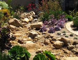 here u0027s another dry creek garden planted with succulents to