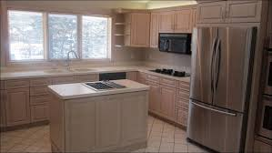 Spray Paint For Kitchen Cabinets Classy 70 Kitchen Cabinet Spraying Inspiration Design Of How To
